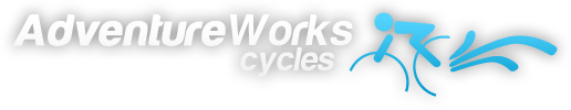 adventure works cycles business